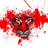 Abstrect tiger face Stock Photo