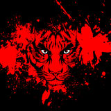 Abstrect tiger face Stock Photos