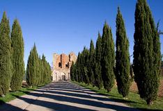 Abtei San-Galganos Stockfotografie