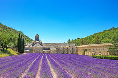 Abtei Senanque der blühenden Lavendelblumen. Gordes, Luberon, Fotorezeptor Lizenzfreie Stockfotos