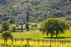Abtei von Sant'Antimo mit Weinbergen, Montalcino, Toskana, Italien Lizenzfreies Stockbild