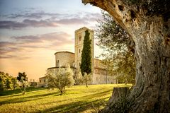 Abtei von Sant-` Antimo in Montalcino Toskana, Italien Lizenzfreies Stockbild