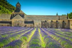 Abtei von Senanque mit erstaunlichem Lavendelfeld, Gordes, Provence, Frankreich Stockbilder