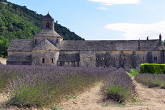 Abtei von Senanque in Provence, Frankreich Stockbilder