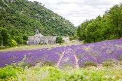 Abtei von Senanque und von Blühen rudert Lavendelblumen Lizenzfreie Stockbilder