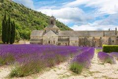 Abtei von Senanque und von Blühen rudert Lavendelblumen Stockbilder