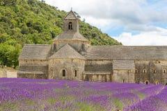 Abtei von Senanque und von Blühen rudert Lavendelblumen Stockfotos