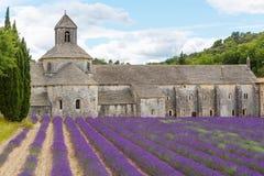 Abtei von Senanque und von Blühen rudert Lavendelblumen Lizenzfreie Stockfotografie
