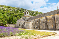 Abtei von Senanque und von Blühen rudert Lavendelblumen Lizenzfreie Stockfotos