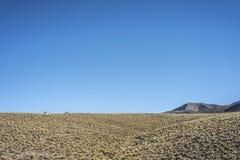 Abteilung von Las Heras in Mendoza, Argentinien Stockbild