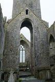 Abteiruinen, Quin, Irland Lizenzfreies Stockbild