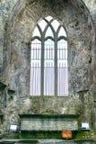 Abteiruinen, Quin, Irland Stockfotografie