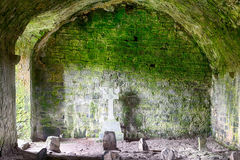 Abteiruinen, Quin, Irland Lizenzfreie Stockbilder