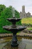 Abteiruinen, Quin, Irland Lizenzfreies Stockfoto