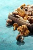 Abtropfbrett mit Vielzahl von rohen Pilzen auf Tabelle Lizenzfreies Stockfoto