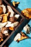 Abtropfbrett mit Vielzahl von rohen Pilzen auf Tabelle Lizenzfreie Stockfotos