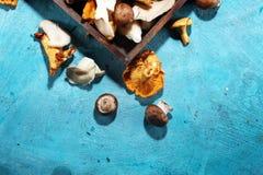 Abtropfbrett mit Vielzahl von rohen Pilzen auf Tabelle Stockbilder