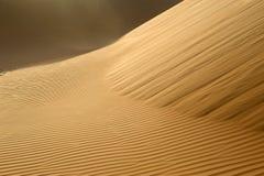 Abu Dhabi Desert Photographie stock libre de droits