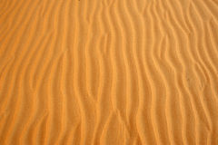 Abu Dhabi Desert Image libre de droits