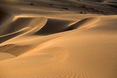 Abu Dhabi Desert Photos stock