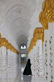 abu dhabi gran meczet Fotografia Stock