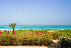 Abu Dhabi I sommaren av 2016 Den skyddade oasen på hotellSten Regis Saadiyat Island Resort Royaltyfria Bilder