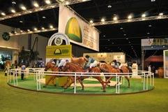 Abu Dhabi International Hunting och ryttareutställning (ADIHEX) - Abu Dhabi Equestrian Club Arkivbilder
