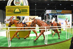 Abu Dhabi International Hunting und Reiterausstellung (ADIHEX) - Abu Dhabi Equestrian Club Stockbild