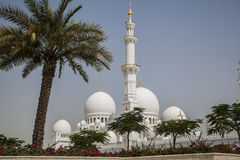 Abu Dhabi, Mosque Stock Photography