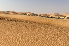 Abu Dhabi pustynia Obraz Stock
