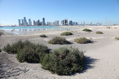 Abu Dhabi-Skyline von Saadiyat-Insel Lizenzfreie Stockfotografie