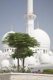 Abu Dhabi Symbol, großartiges Moos, schönes Gebäude Lizenzfreie Stockbilder