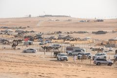 Busy beduin camp on a sunny day. Abu Dhabi, UAE - Dec 15, 2017: Busy beduin camp on a sunny day during Al Dhafra camel festival royalty free stock photo