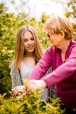 Abuela con cultivar un huerto del nieto Fotografía de archivo libre de regalías