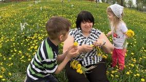 Abuela con los nietos que juegan en el prado con los dientes de león almacen de video