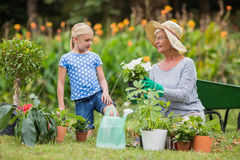 Abuela feliz con su cultivar un huerto de la nieta Foto de archivo libre de regalías