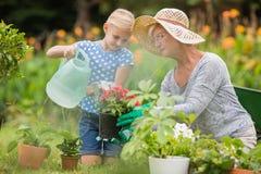 Abuela feliz con su cultivar un huerto de la nieta Foto de archivo