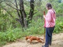 Abuela que camina fotos de archivo
