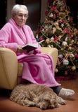 Abuela que lee un libro fotografía de archivo libre de regalías