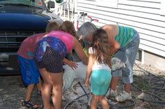 Abuela y nietos que bañan el perro Imágenes de archivo libres de regalías