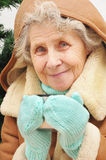 Abuelita que bebe té caliente Fotos de archivo