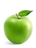 Abuelita Smith Apple con una hoja ilustración del vector