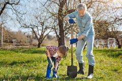 Abuelo al aire libre que cultiva un huerto con el niño pequeño Foto de archivo libre de regalías