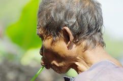 Abuelo indonesio Fotos de archivo libres de regalías