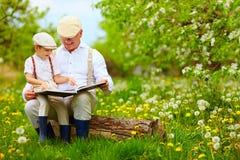 Abuelo que lee un libro a su nieto, en jardín floreciente imagen de archivo