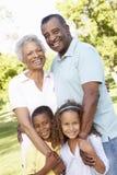 Abuelos afroamericanos con los nietos que caminan en parque Fotos de archivo libres de regalías