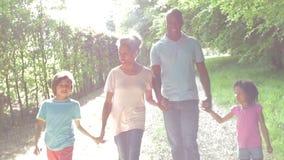 Abuelos con los nietos que caminan a través de campo metrajes