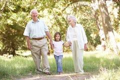 Abuelos en parque con la nieta Imagen de archivo libre de regalías