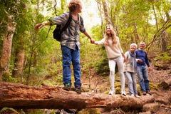 Abuelos y adolescencias que caminan en un árbol caido en un bosque Imagenes de archivo