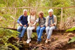 Abuelos y adolescencias que juegan en un puente en un bosque Fotos de archivo